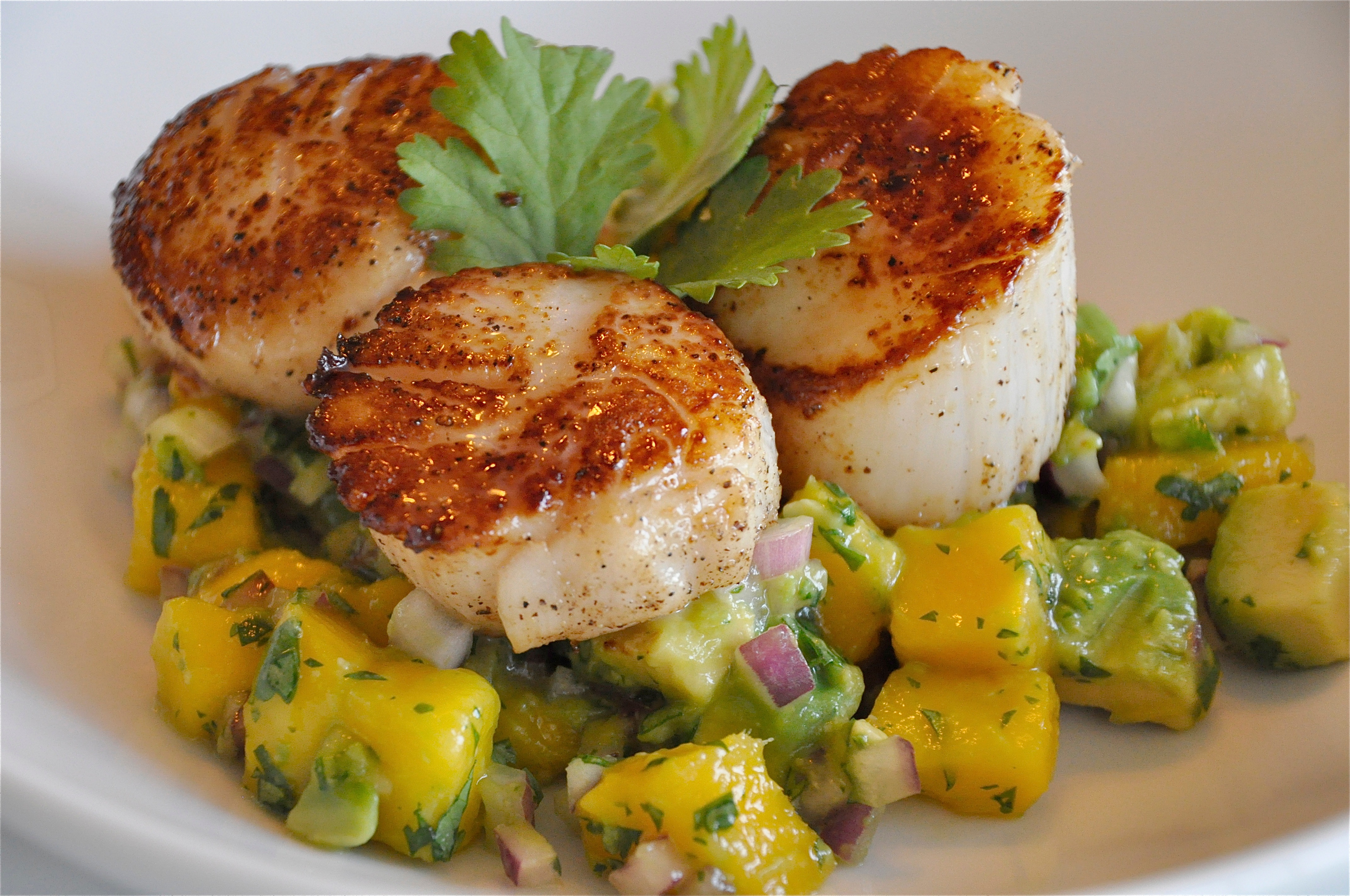 Indian Pan-Grilled Sea Scallops Recipes — Dishmaps